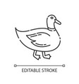 duck pixel perfect linear icon vector image
