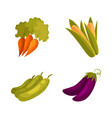 farm products - corn carrot zucchini eggplant vector image