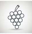 grapes drawing isolated icon design vector image vector image