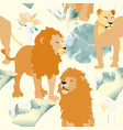 orange lions and lioness on white background vector image vector image