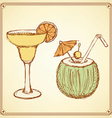 Sketch cocktail with coconut in vintage style vector image vector image