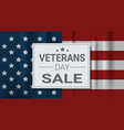 veterans day sale celebration shopping promotions vector image vector image