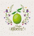 viva mexico colorful poster with lemon fruit vector image vector image