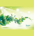 abstract summer background with green leaves vector image vector image