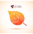 Autumn orange watercolor leaf icon vector image