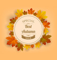 autumn sale autumn background with red yellow vector image vector image