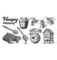 collection honey beekeeping apiary set vector image