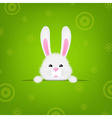 Easter Banner With Rabbit vector image vector image
