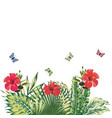 floral composition red hibiscus butterflies vector image