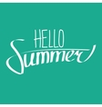Hello Summer Lettering vector image vector image