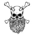 horned skull with beard and crossed bone vector image vector image
