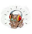 kitten with headphones vector image vector image