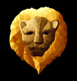 low poly with yellow lion head vector image vector image