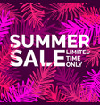 modern poster summer sale limited time only vector image vector image