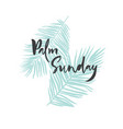 palm sunday card poster banner with palm leaves vector image vector image