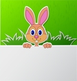 Rabbit with blank sign vector image