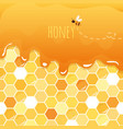 sweet honey glossy background with copy space for vector image