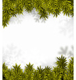 Coniferous fir frame vector image