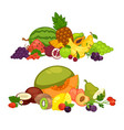 fruits and berry food farm products flat vector image vector image