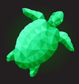 low poly art with green turtle on black background vector image