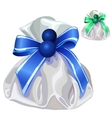 White silk bag for gifts with blue bow vector image vector image