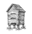 wooden beehive apiary on grass apiculture vector image