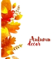 autumn watercolor leaves vector image