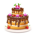 birthday cake with chocolate vector image