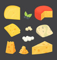 cheese types cartoon style vector image vector image