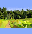 field and edge of the forest with a road light vector image