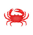 flat red crab isolated on white background vector image