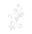 flora element for design vector image