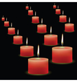 red candles vector image