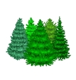 Set of christmas tree like fir or pine Blue vector image vector image