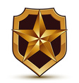 Sophisticated blazon with a golden star emblem 3d vector image vector image
