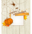 Spider pumpkin and paper sheet vector image vector image