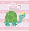 bashower cute turtle animal cartoon vector image vector image