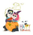 cute couple in love sitting on pumpkin happy vector image vector image