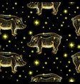 glowing night pigs seamless pattern with stars by vector image