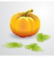 orange pumpkin and green leaves vector image