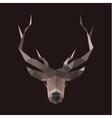 Deer polygons horned animal head low vector image vector image