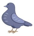 Dove icon cartoon style vector image vector image