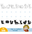 find correct shadow black and white forest vector image vector image