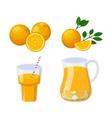 Glass of orange juice vector image vector image