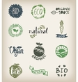 Ink logotypes set Badges labelsleavesribbons vector image vector image