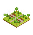 isometric green city park with trees alleys vector image
