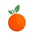 orange citrus fruit icon bright art vector image vector image