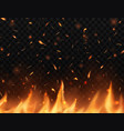 realistic fire with sparks burning campfire vector image