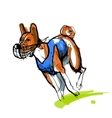 Sketch of running basenji in blue coursing dress vector image vector image