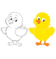 Chick vector image vector image